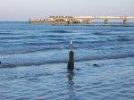 plaża w Kołobrzegu, morze